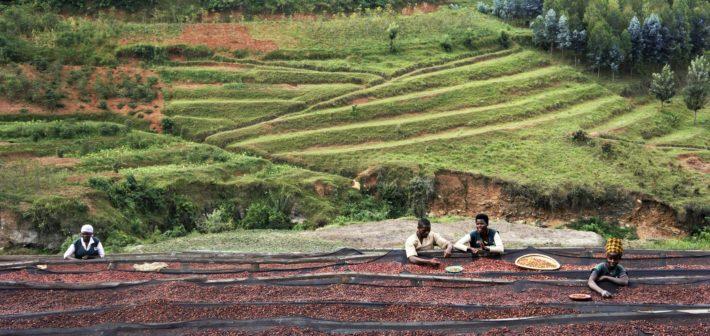 Kaffepause i de tusen åsers land