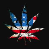 Politikerne som kjemper om å være mest for cannabis